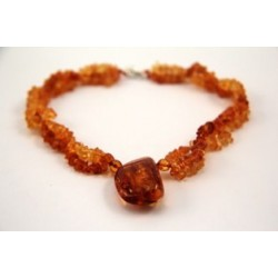 Amber jewelry for pets