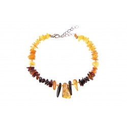 Amber jewelry for your pet (20-25cm.)