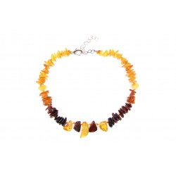 Amber jewelry for your pet (25-30cm.)