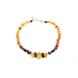 Amber jewelry for your pet (30-35cm.)