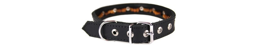 Leather collar with amber for dogs
